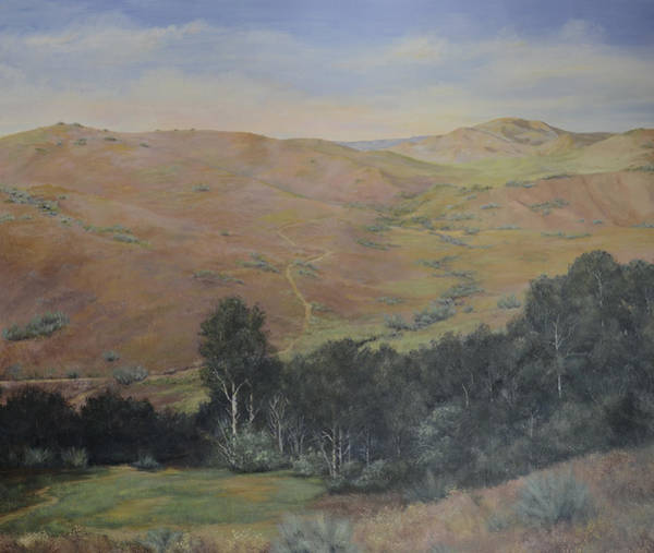 Painting - Boise Foothills by Cae Wuerth