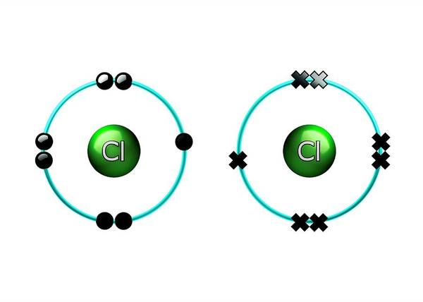 Atoms Wall Art - Photograph - Bond Formation In Chlorine Molecule by Animate4.com/science Photo Libary