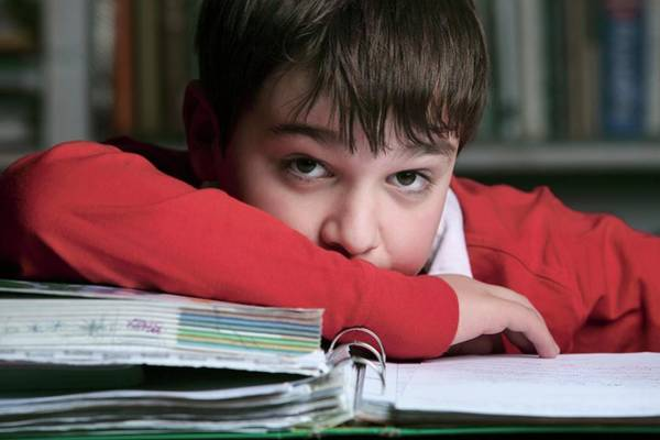 Classroom Photograph - Bored Boy Not Doing His Homework by Mauro Fermariello/science Photo Library