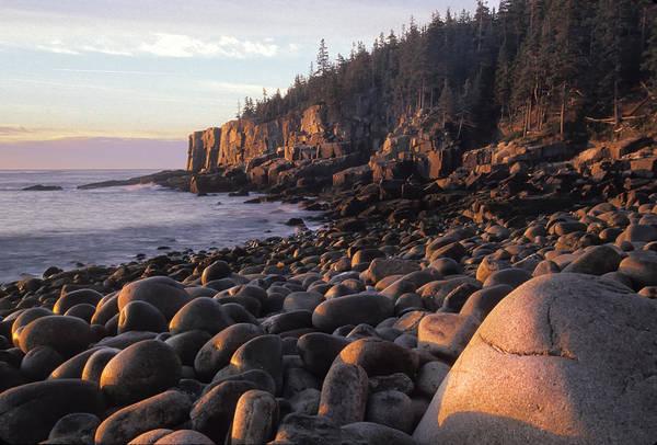 Photograph - Boulder Beach by Jim Dollar