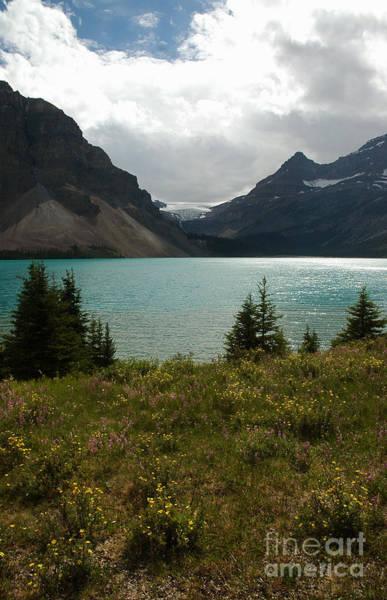 1010a Bow Lake Alberta Art Print