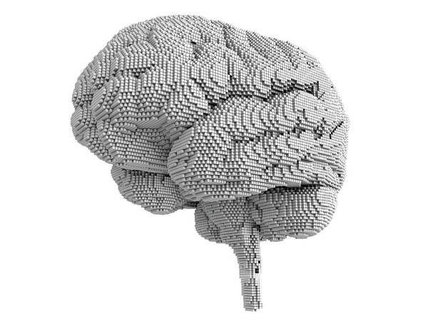 Wall Art - Photograph - Brain Pixelated by Alfred Pasieka/science Photo Library