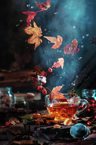 Water Fall Photograph - Briar Tea With Autumn Swirl by Dina Belenko