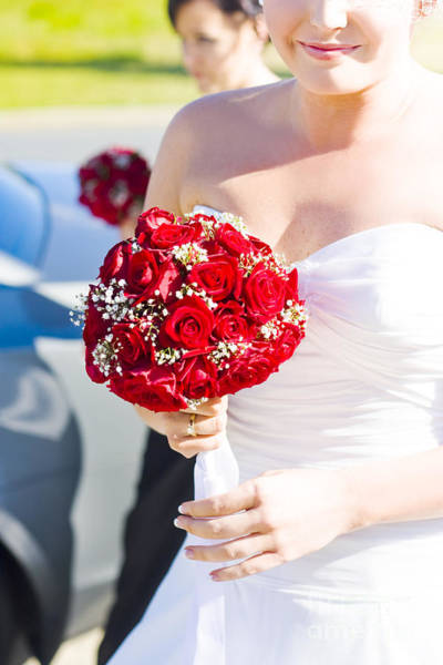 Radiant Photograph - Bride Holding Red Rose Flower Bunch by Jorgo Photography - Wall Art Gallery