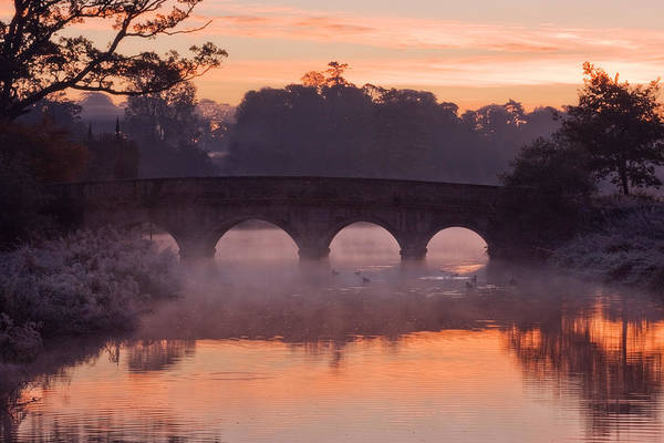 Photograph - Bridge At Dawn / Ireland by Barry O Carroll
