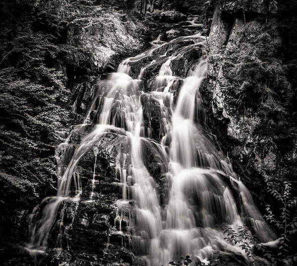 Photograph - Bridle Veil Falls by Robert Clifford
