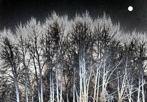 Okanagan Valley Digital Art - Bright Winter Moon by Will Borden