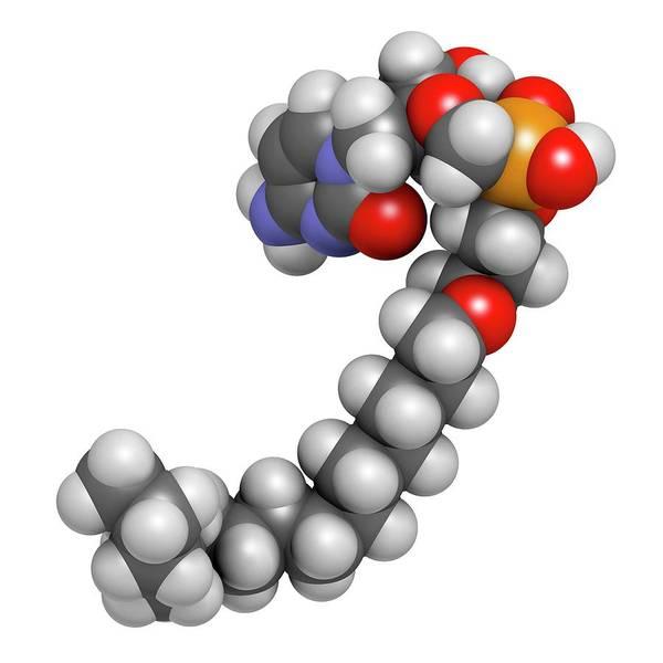 Pharma Wall Art - Photograph - Brincidofovir Antiviral Drug Molecule by Molekuul