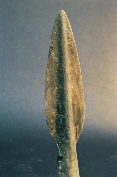Wall Art - Photograph - Bronze Age Arrow-head by Pasquale Sorrentino/science Photo Library