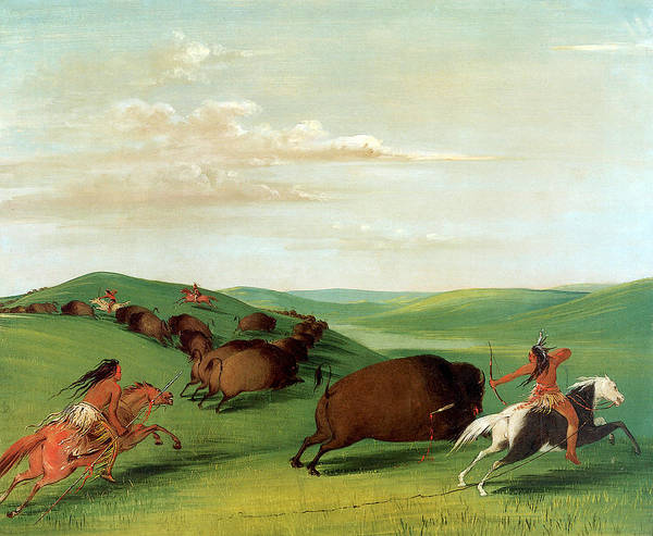 Wall Art - Photograph - Buffalo Chase With Bows And Lances by George Catlin