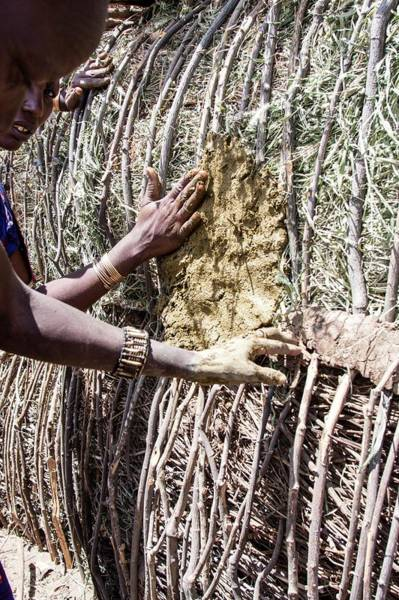Apply Photograph - Building A Maasai Hut by Photostock-israel