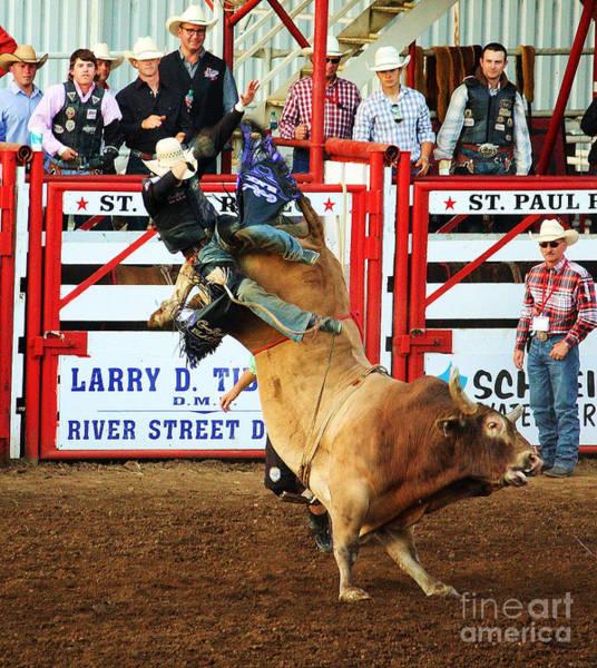 Wall Art - Photograph - Bull Riding by Steven Baier