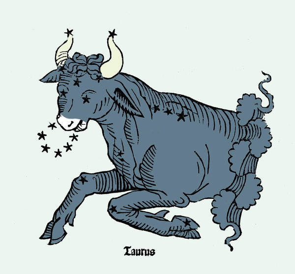 Wall Art - Photograph - Bull, Taurus Constellation by Science Source