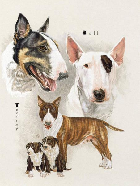 Drawing - Bull Terrier by Barbara Keith