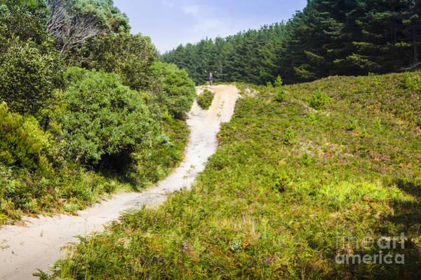 Photograph - Bushwalking Adventure Man On Western Tasmania Tour by Jorgo Photography - Wall Art Gallery