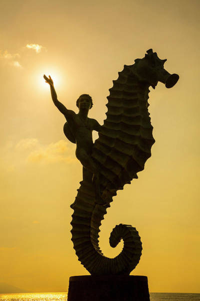 Malecon Wall Art - Photograph - 'caballero Del Mar' (the Seahorse by Douglas Peebles