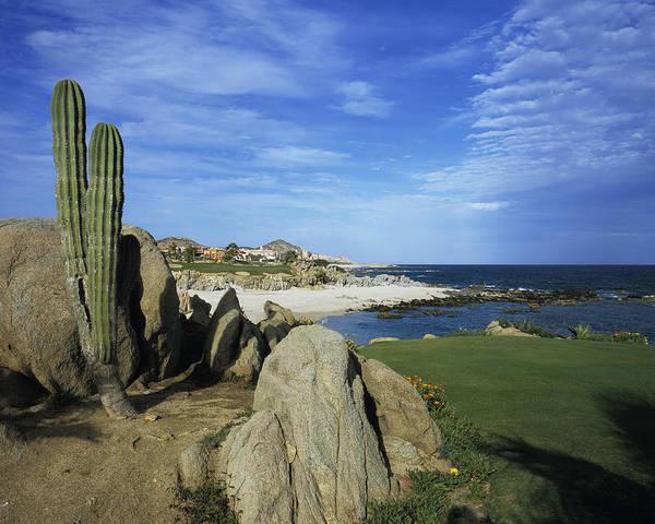 Photograph - Cabo Del Sol Golf Club by Stephen Szurlej