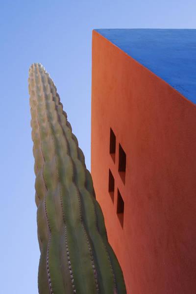 Cactus Against Colorful Walls Art Print by Pixelchrome Inc