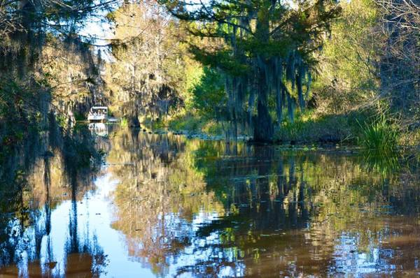 Photograph - Caddo Lake 12 by Ricardo J Ruiz de Porras