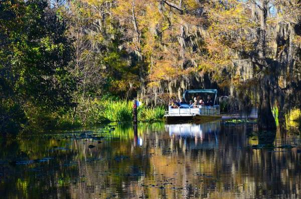 Photograph - Caddo Lake 13 by Ricardo J Ruiz de Porras