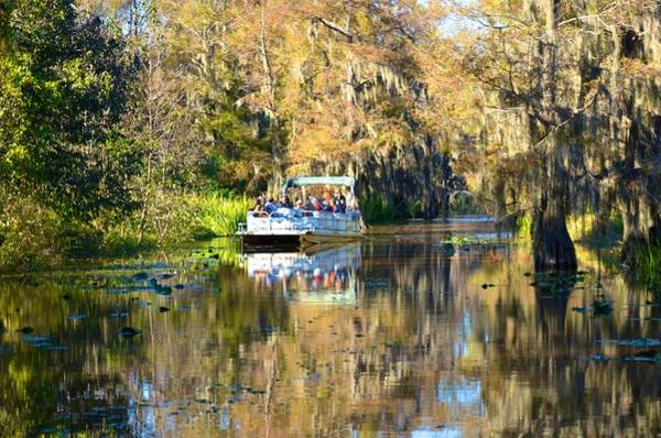 Photograph - Caddo Lake 14 by Ricardo J Ruiz de Porras