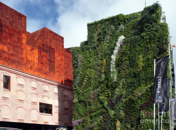Caixa Forum Wall Art - Photograph - Caixa Forum Madrid by Ros Drinkwater