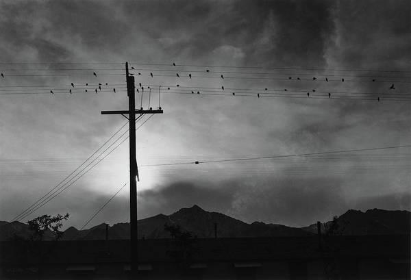 Wall Art - Photograph - California Manzanar, 1943 by Granger
