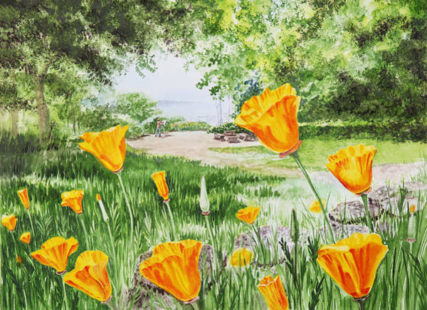 Area Painting - California Poppies by Irina Sztukowski
