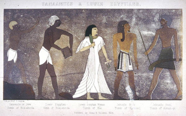 Wall Art - Drawing - Canaanite Or Jew And Lower  Egyptian by Mary Evans Picture Library