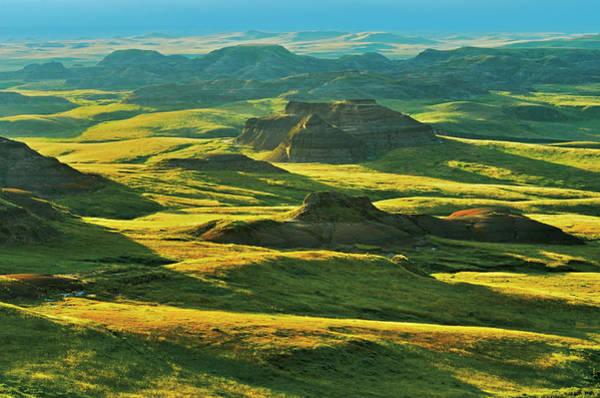 Killdeer Photograph - Canada, Saskatchewan, Grasslands by Jaynes Gallery