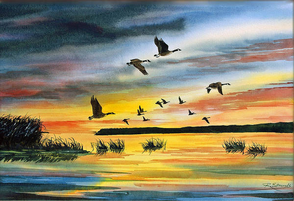 Canada Goose Wall Art - Painting - Canadas At Sunset by Raymond Edmonds