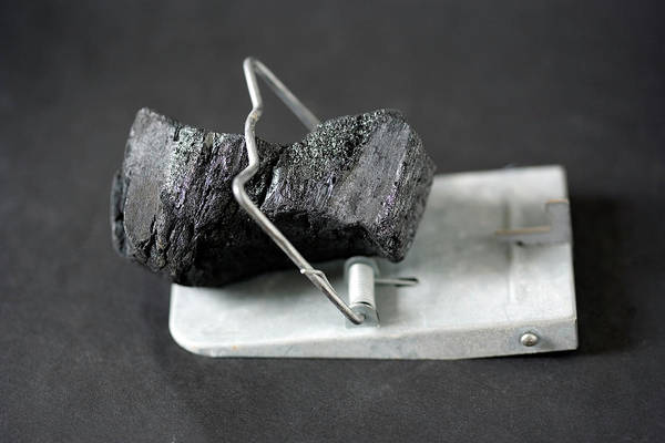 Trapping Photograph - Carbon Capture by Adam Hart-davis/science Photo Library