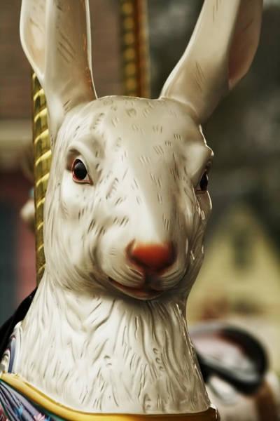 Photograph - Carousel Rabbit by Kristia Adams