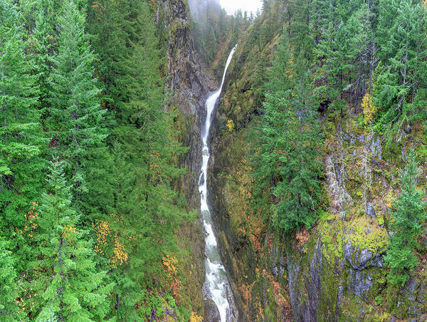 Ecosystem Photograph - Cascades Waterfall by Tom Norring