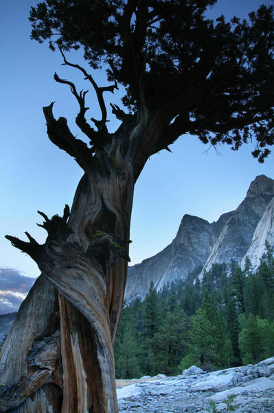Kings Canyon Photograph - Castle Domes In Kings Canyon National by Feargus Cooney
