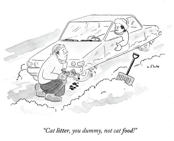 Litter Drawing - Cat Litter You Dummy Not Cat Food by Emily Flake