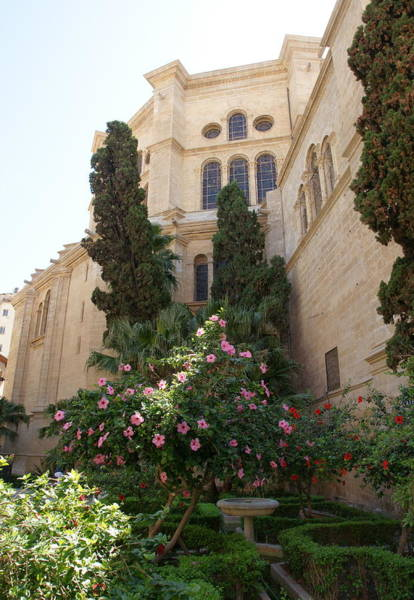 Photograph - Catedral Malaga by Olaf Christian