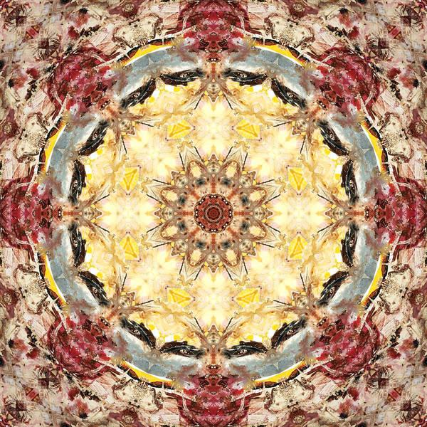 Wall Art - Digital Art - Cecropia Sun 4 by Lisa Lipsett