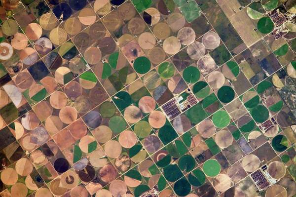 Photograph - Centre Pivot Irrigation by Nasa/science Photo Library