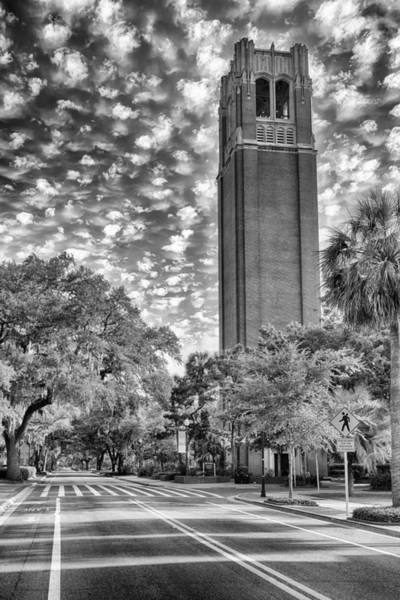 Gainesville Photograph - Century Tower  by Howard Salmon