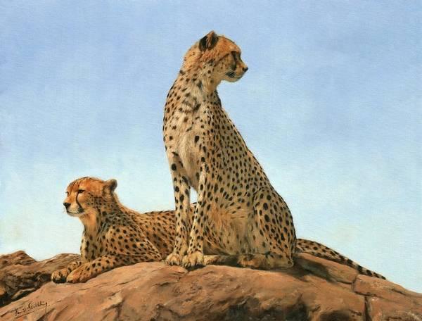 Savannah Painting - Cheetahs by David Stribbling