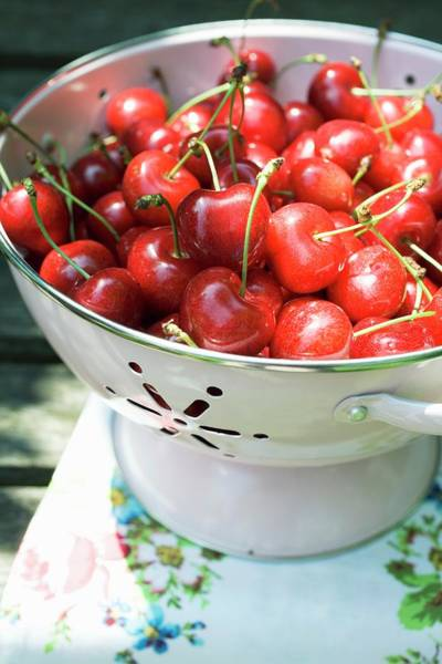 Wall Art - Photograph - Cherries In Colander by Foodcollection