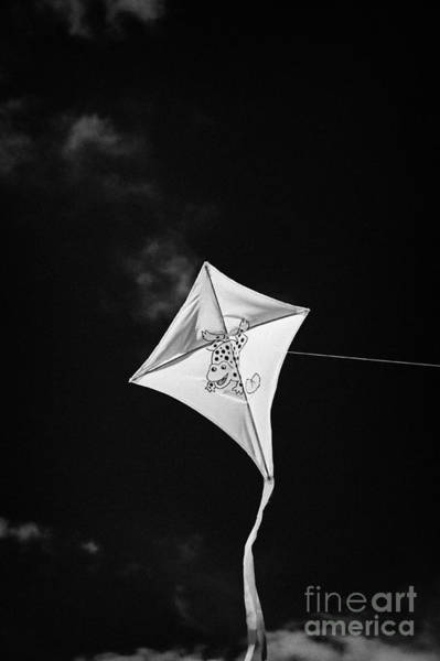 Wall Art - Photograph - Childs Kite With Frog Design Flying Against Blue Sky by Joe Fox