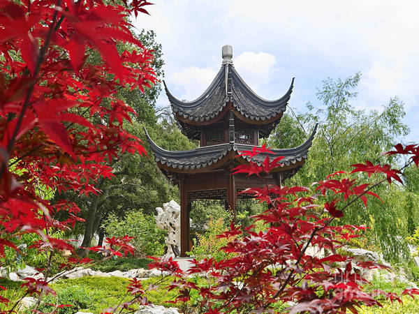 Wall Art - Photograph - Chinese Garden With Pagoda And Lake. by Jamie Pham