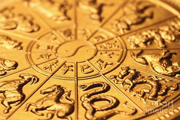 Zodiac Photograph - Chinese Zodiacs by Lars Ruecker