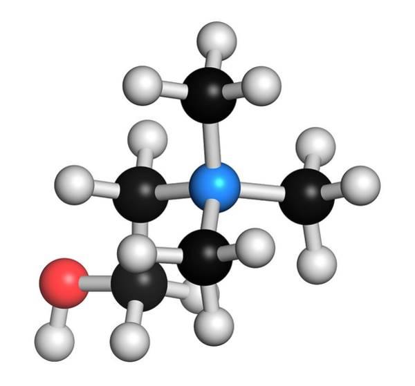 Vitamin Photograph - Choline Essential Nutrient Molecule by Molekuul
