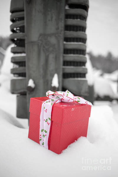 2014 Photograph - Christmas Down On The Farm by Edward Fielding