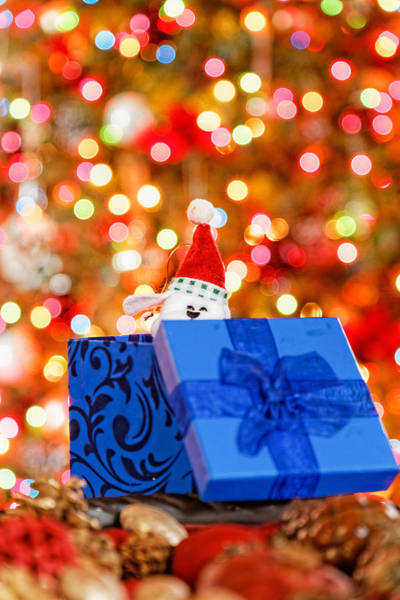 Photograph - Christmas Time by Peter Lakomy
