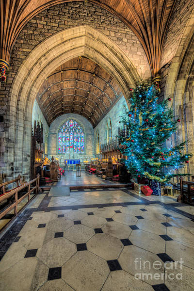 Christmas Tree Photograph - Christmas Tree by Adrian Evans