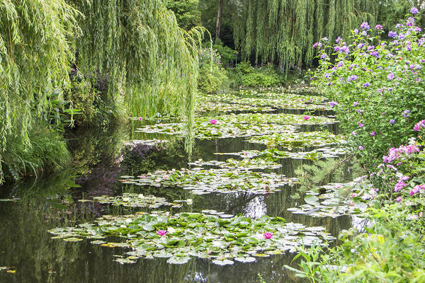 Claude Monet Photograph - Claude Monet's Lily Pond by David Wasserboehr